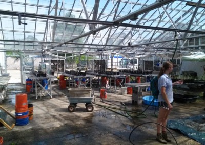 Rachel Froelich after cleaning greenhouse (May 2016)